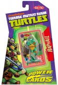 Teenage Mutant Ninja Turtles Power Cards & Raphael