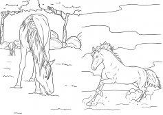 top model målarbok hästar