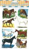 Scraps: Horses