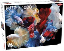 Puzzel Animals: Fighting Fish - 1000 stukjes