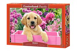 Labrador Puppy in pink box - 500 stukjes