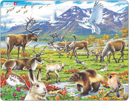 Larsen Arktinen sisämaa (Maxi) 50 palaa