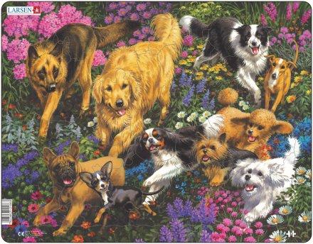 Larsen Koirat kukkakedolla (Maxi) 32 palaa