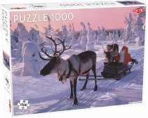 Santa Claus in Sleigh puzzle 1000 pcs