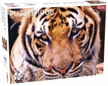Puzzel Animals: Tiger Portrait - 1000 stukjes