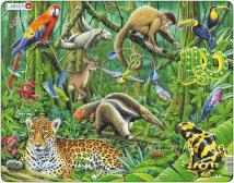 Larsen Eteläamerikkalainen sademetsä (Maxi) 70 palaa